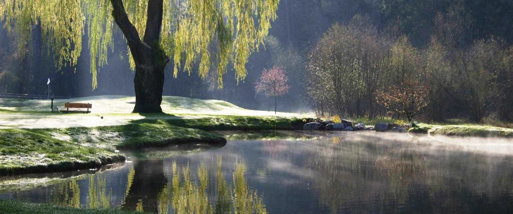 Pond-8-crop